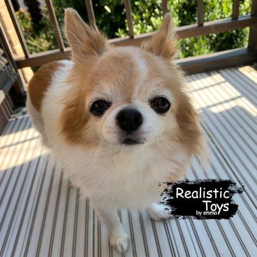 Emma Realistic Toys - Teacup Chihuahua Dog  Gina