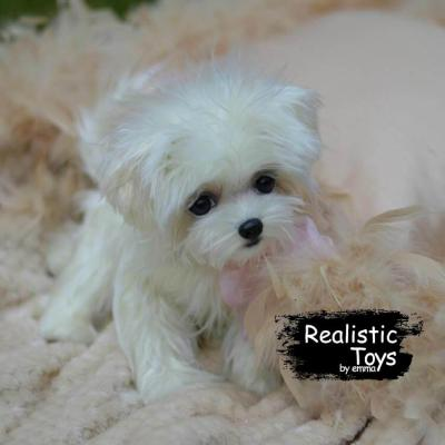 Emma Realistic Toys - Realistic & Lifelike Maltese Puppy Pepper