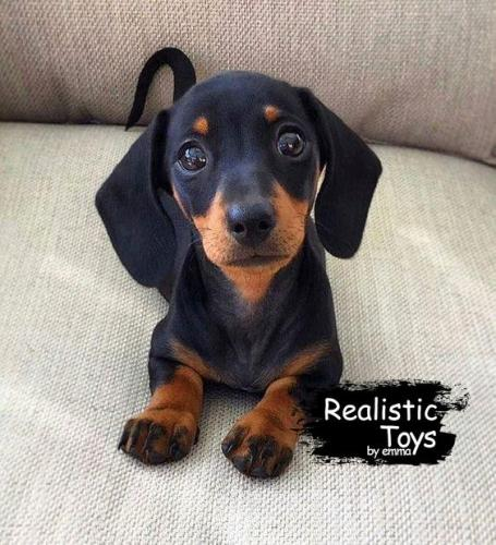 Emma Realistic Toys - Realistic & Lifelike Dachshund Kuki
