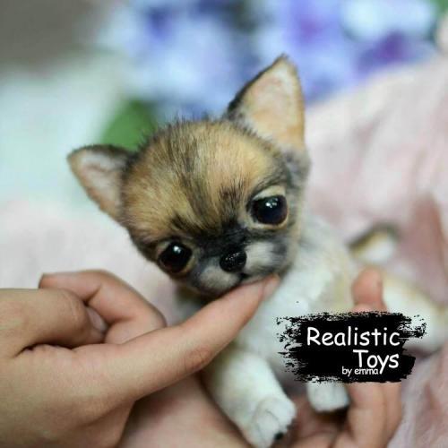 Emma Realistic Toys - Realistic Chihuahua Puppy Gizmo