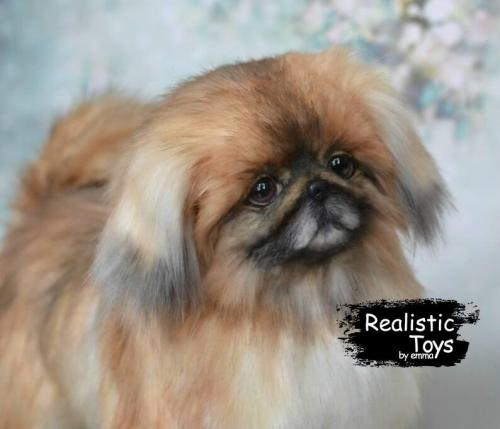 Emma Realistic Toys - Realistic Pekingese Puppy Molly