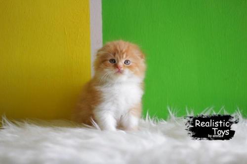 Emma Realistic Toys - Realistic & Lifelike Orange Cat  Joyce