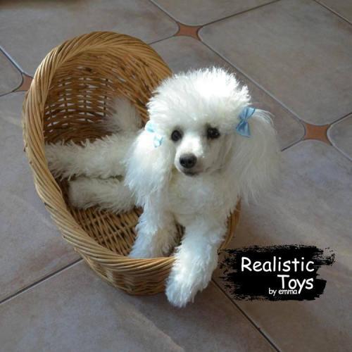 Emma Realistic Toys - Realistic & Lifelike Poodle Dog Toby