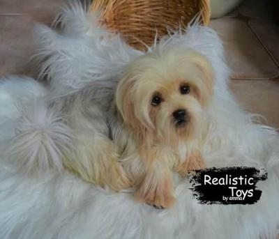 Emma Realistic Toys - Yorkie Dog Sasha