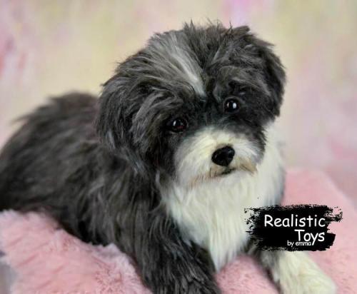 Emma Realistic Toys - Realistic & Lifelike Poodle Dog Yuki