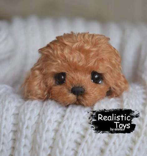 Emma Realistic Toys - Realistic & Lifelike Teddy Dog Niki