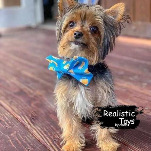 Emma Realistic Toys - Yorkie Dog Rocky