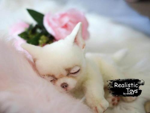 Emma Realistic Toys - Realistic Chihuahua Puppy Romeo