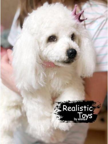 Emma Realistic Toys - Realistic & Lifelike Poodle Dog Mimi