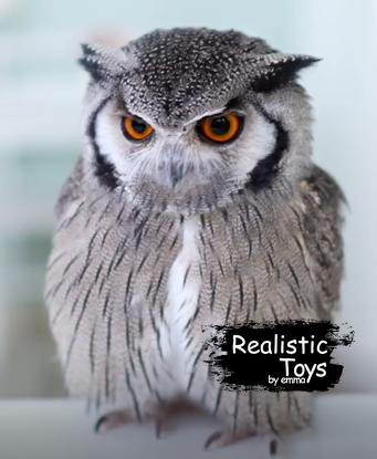 Emma Realistic Toys - Realistic  Owl Kuppi