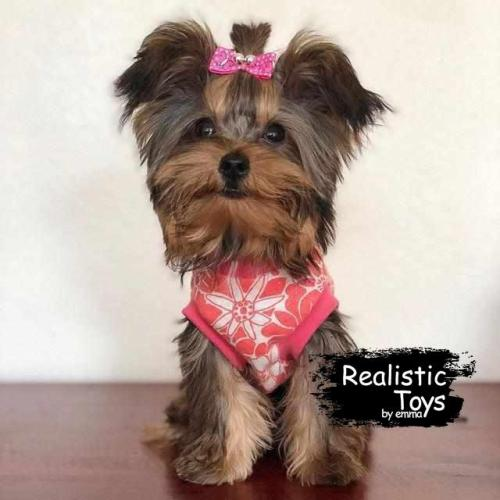 Emma Realistic Toys - Yorkie Dog Scout