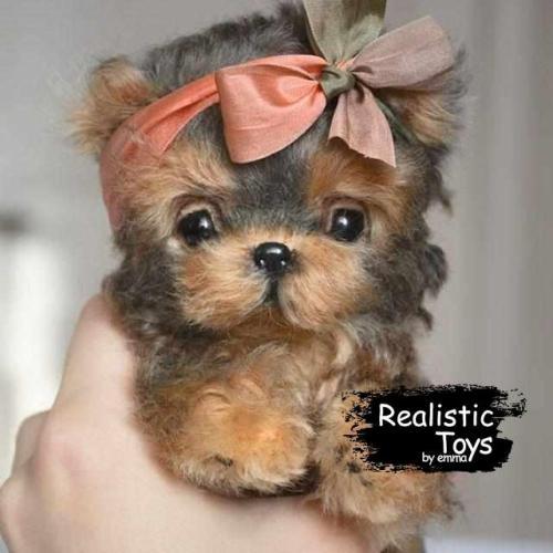 Emma Realistic Toys - Yorkie Dog Luna