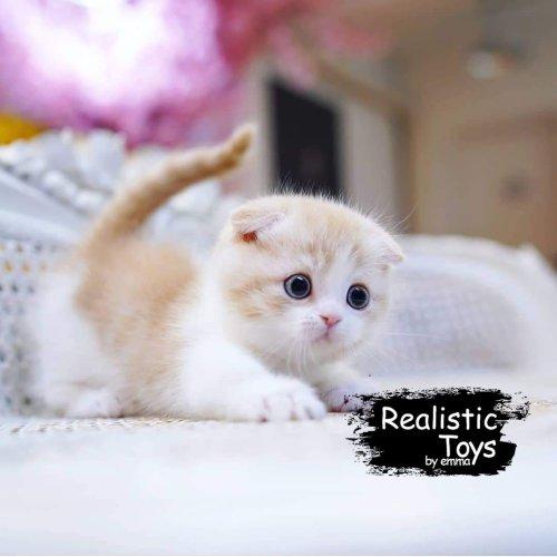 Emma Realistic Toys - Realistic & Lifelike Orange Cat Aliza
