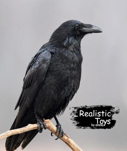 Emma Realistic Toys - Realistic Crow Syrup