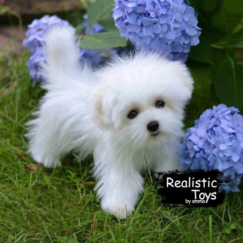 Emma Realistic Toys - Realistic & Lifelike Maltese Puppy Betty