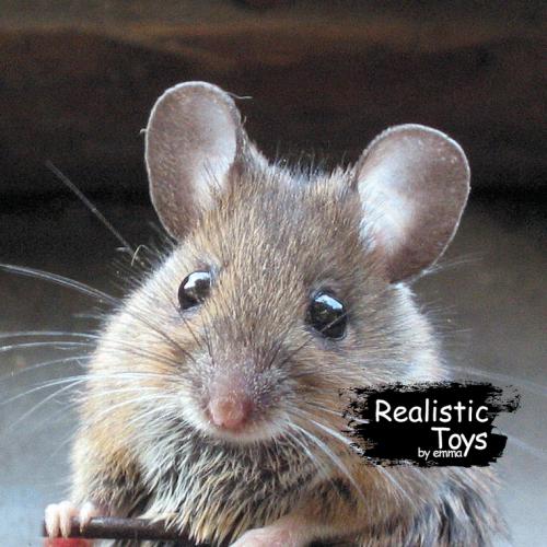 Emma Realistic Toys - Realistic & Lifelike Mouse Kaylah