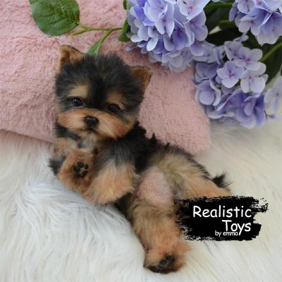 Yorkie Dog Casey , Lifelike & Realistic Companion Pets