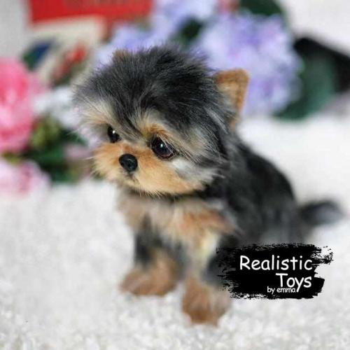 Emma Realistic Toys - Yorkie Dog Benji