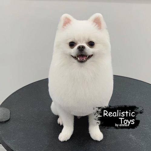 Emma Realistic Toys - Realistic Pomeranian Puppy Karma