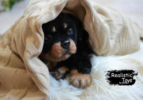 Emma Realistic Toys - Realistic & Lifelike Rottie Puppy Lulu