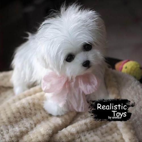 Emma Realistic Toys - Realistic & Lifelike Maltese Puppy Jasmine