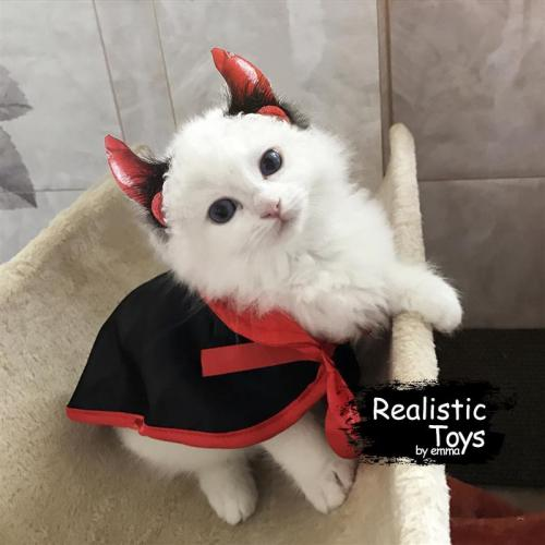 Emma Realistic Toys - Halloween pet costume playing vampire