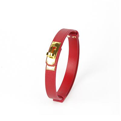 Cardinal Red カージナルレッド 本革拘束5点セット