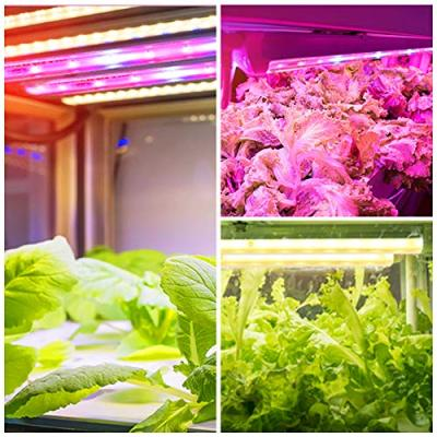 Roleadro Grow Light for Indoor Plants, 3500K& Red Blue Full Spectrum Grow Lamp with Timer/Extension Cables Plant Lights Bar 4 Dimmable Levels for Tent Seedling Hydroponics - 4Pack