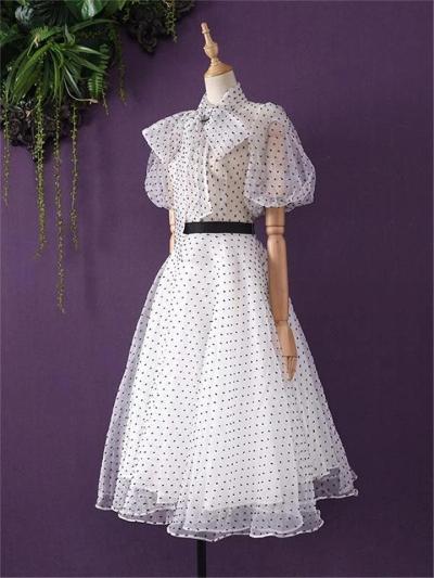 White 1950S Polka Dot Chiffon Lining Dress