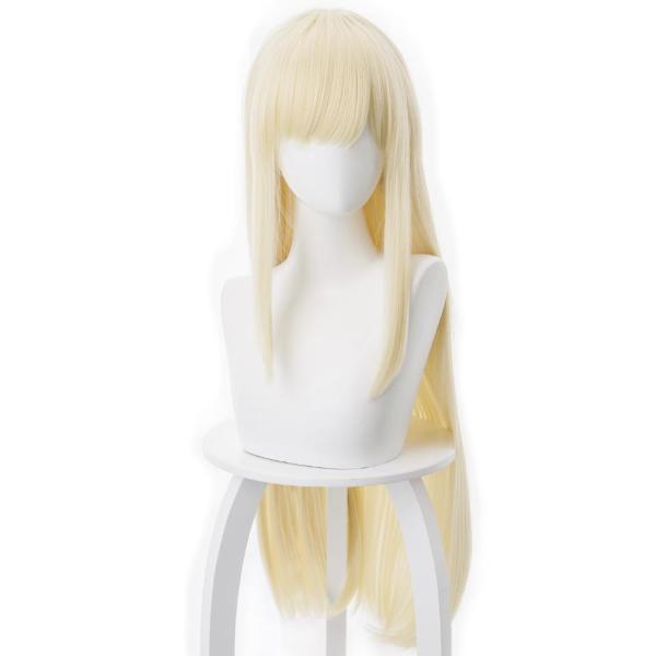 Fate/Grand Order FGO Sima Yi Cosplay Wig