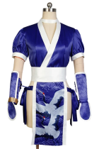 DOA: Dead or Alive Kasumi Cosplay Costume