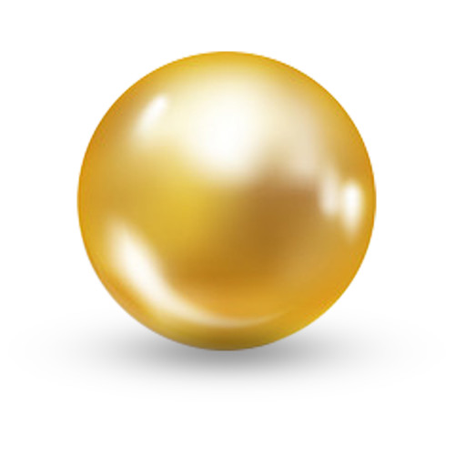 10mm Gold Pearls Double-hole P004