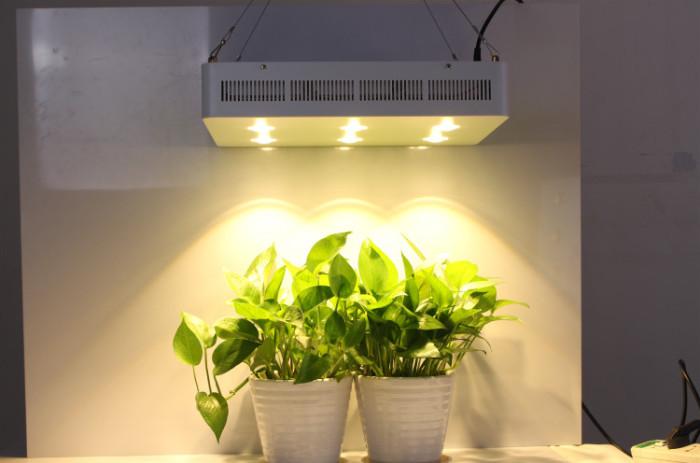 335W Full Spectrum high power LED Plant COB Greenhouse Planting Light LED Grow Light