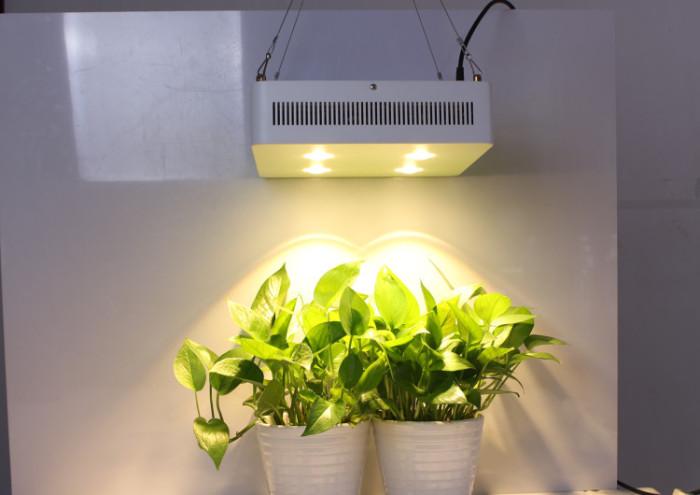 Houyi Factory Full Spectrum Cree Plant Light 219W High Power Sliver LED Plant Grow Light