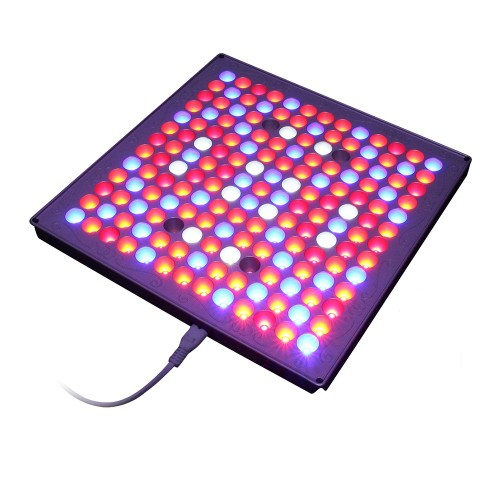 Best 169pcs High Quality Epileds LED Chips Hydroponic for Microgreens Lettuce LED Panel Grow Light