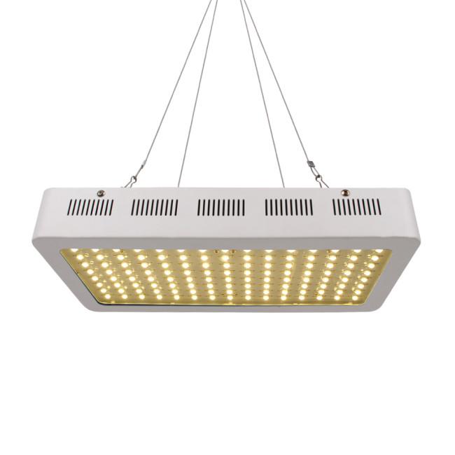 Best 600W Full Spectrum Wholesale Vertical Farming Indoor Growing LED Grow Light
