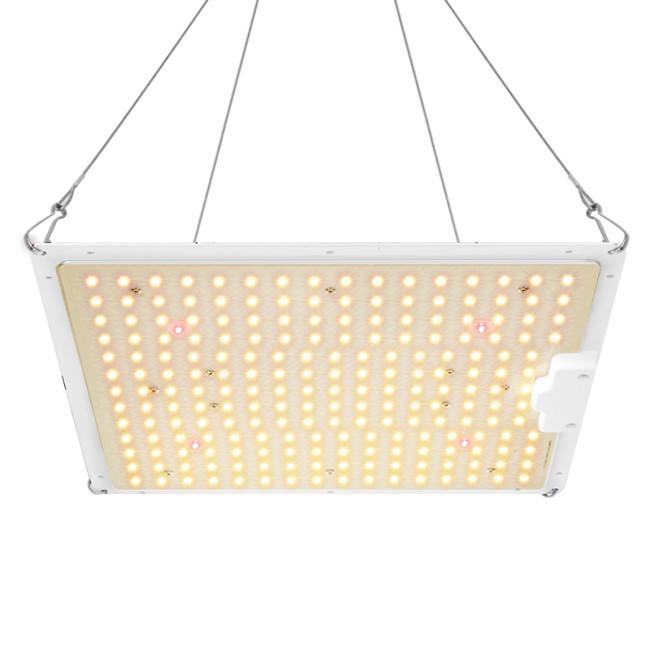 Houyi Top Brand Meanwell Driver Full Spectrum + 660nm 100W QB LED Grow Light