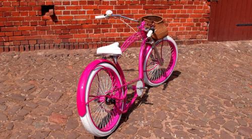 [Limited Time Special] - 2021 E-Bike Damencruiser Cruiser