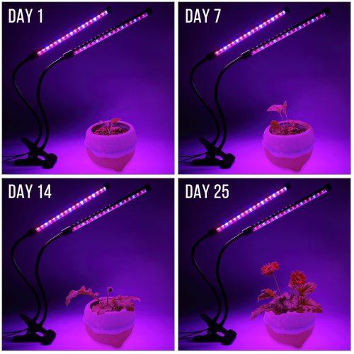 weeding Full Spectrum Flexible Gooseneck Table Plant Lamp LED Corn Light Dimmable For Indoor Garden USB 20W 2 head Led Grow Lighting