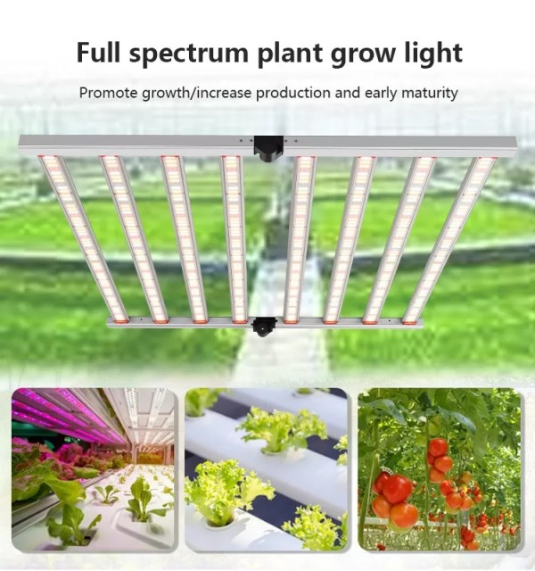800W Hot Selling Spectrum Dimmable High Efficacy 8 Bars LED Plant Growth Light Designed Plant growth light
