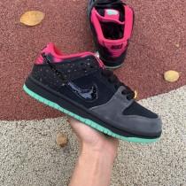 Nike Dunk SB Low Premier Northern Lights