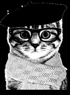 Designer French Cat Glasses Beret Hat Scarf Hipster Shirt