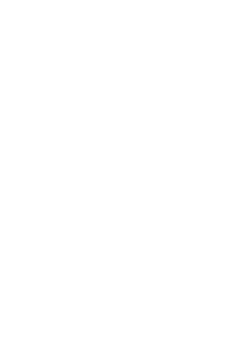 I Love Lakeland Terriers St. Patrick's Day Pet Dog Lover S-3XL Shirt