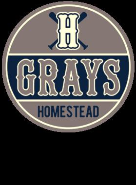 Homestead Greys Negro Baseball Team Retro Mug Men T Shirt