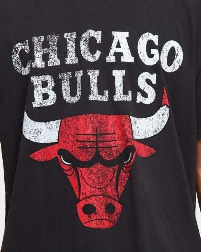 Chicago Bulls Unisex Oversized Logo Vintage T-Shirt (#U87)