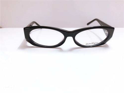Special Offer Ferragamo Eyeglasses Common Case