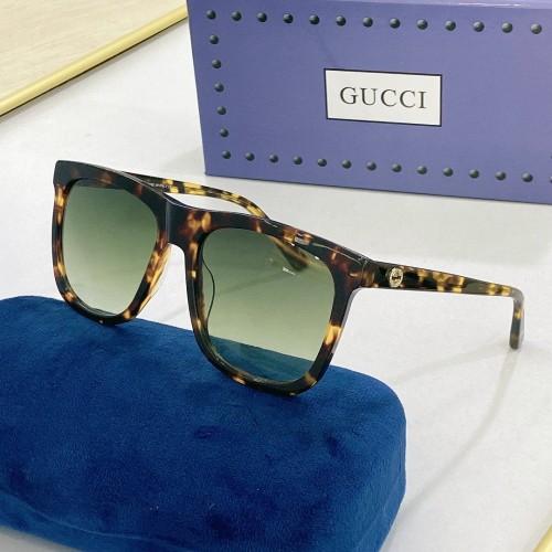 GUCCI Sunglasses GG0341S SG691
