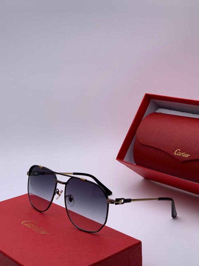 Wholesale Replica Cartier Sunglasses CT0109 Online CR128