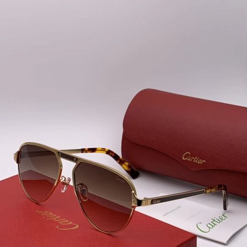 Wholesale Replica Cartier Sunglasses CT0101 Online CR111