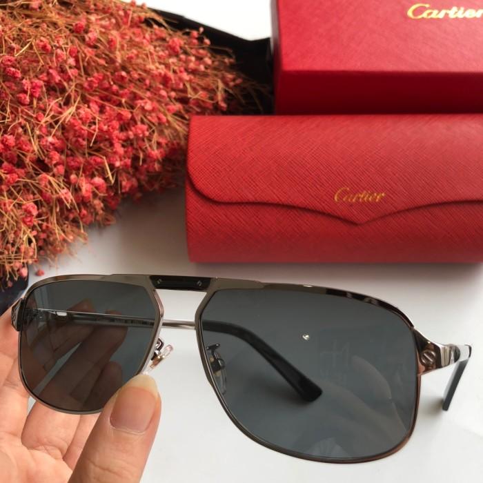 Wholesale Replica Cartier Sunglasses CT0102S Online CR125
